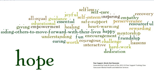 psw-word-cloud-2013-14-vers3